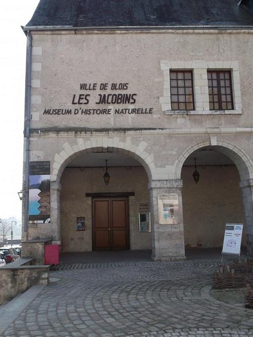 Musee d'histoire naturelle Blois