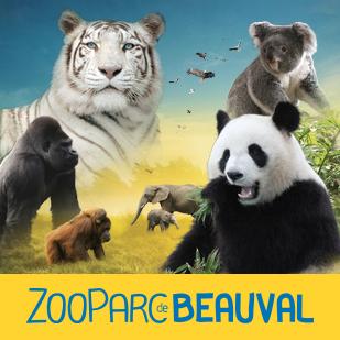 Zoo de beauval St Aignan